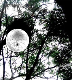 a luminous globe,